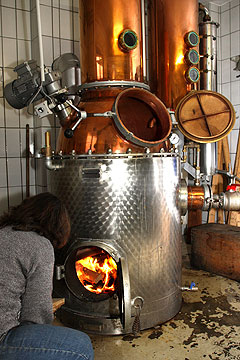 Picture: Distillery