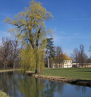 Picture: Ring canal round Schloss Lustheim
